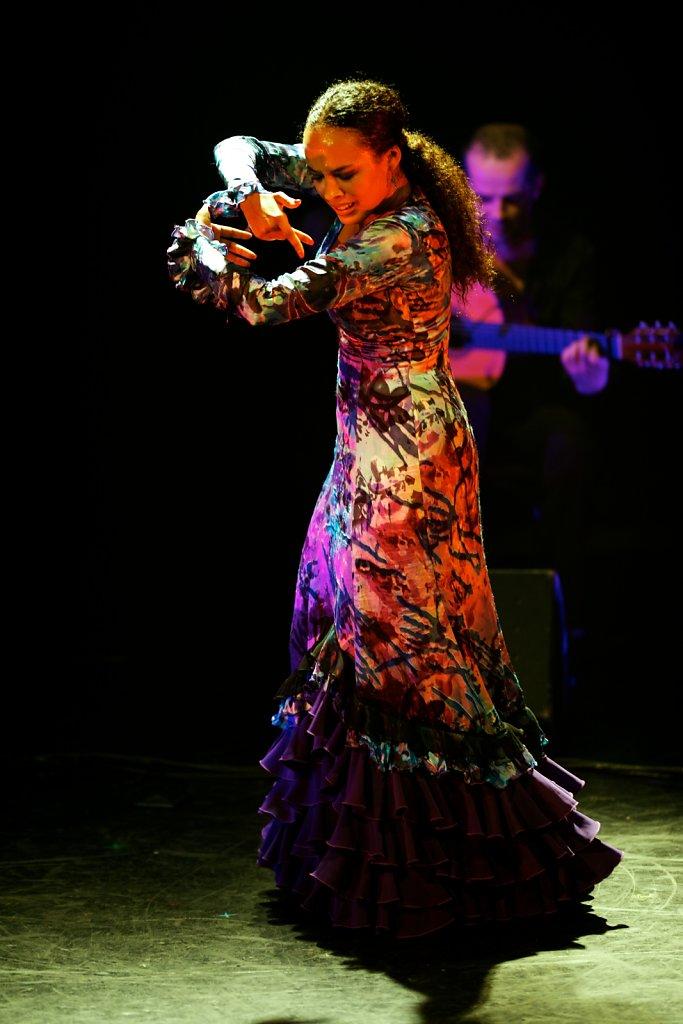Flamenco-002.jpg