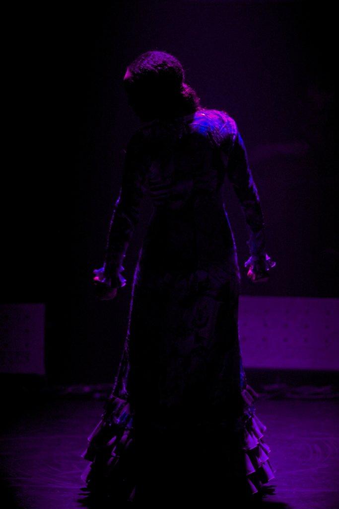 Flamenco-004.jpg